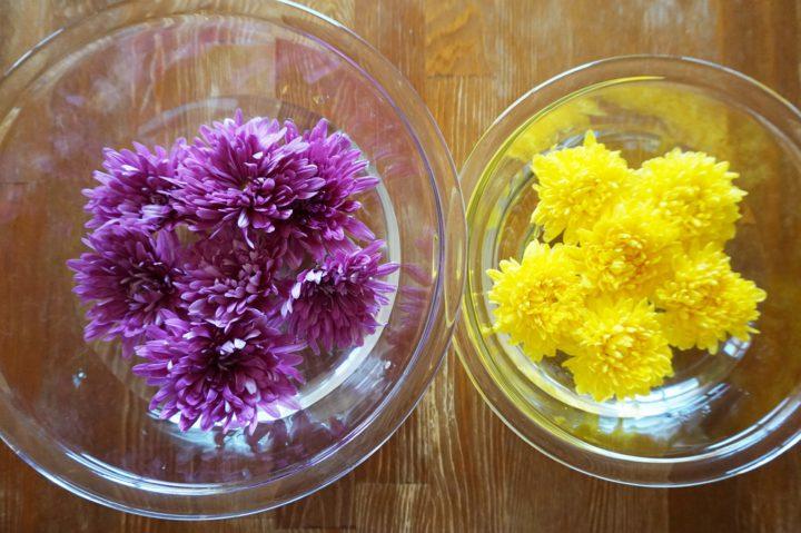 食用菊画像1