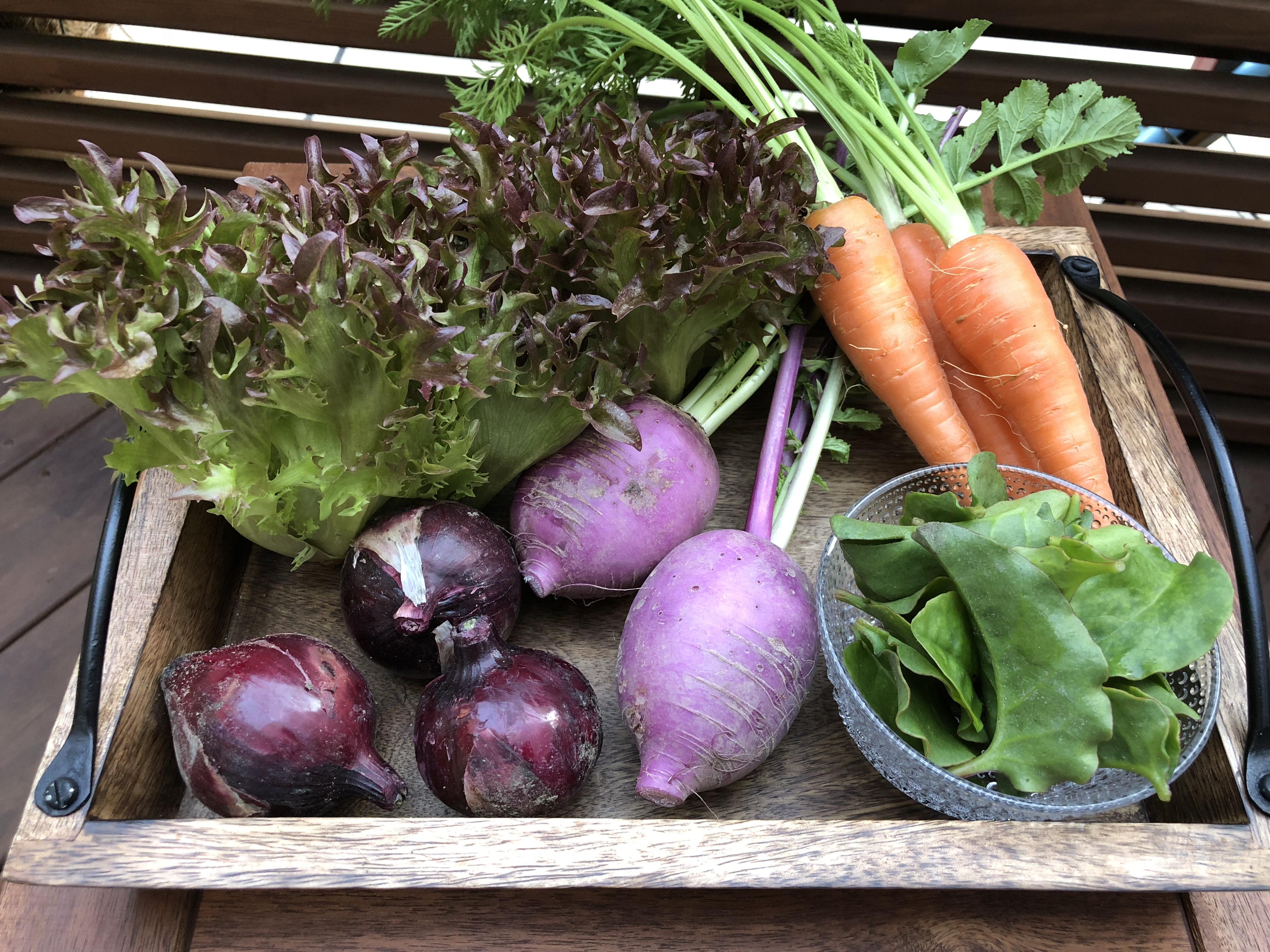 オーガニック野菜を購入
